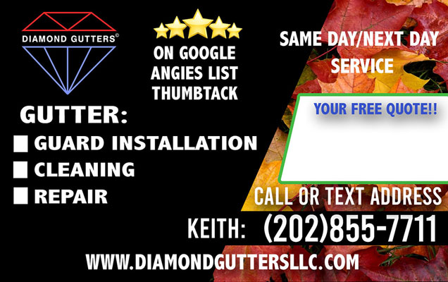 Excellent Gutter Cleaning In Washington Dc 20020